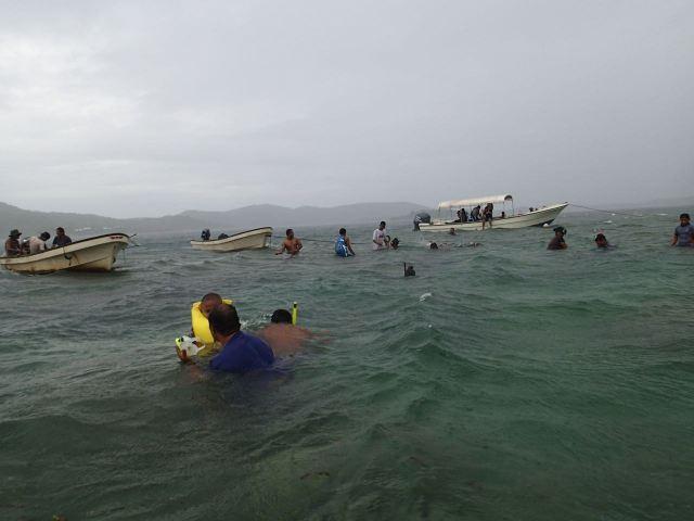 170218あれる海でシャコガイ清掃